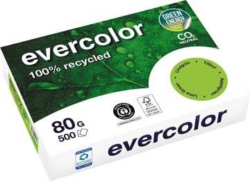 Clairefontaine Evervolor papier couleur recyclé, A4, 80g, 500 feuilles, tilleil